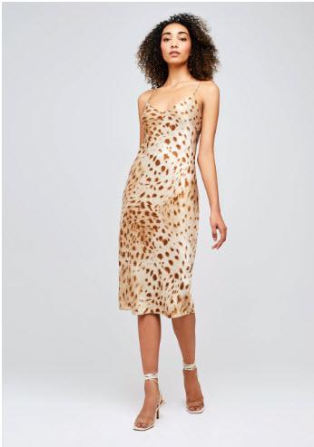 animal print slip dress denver co